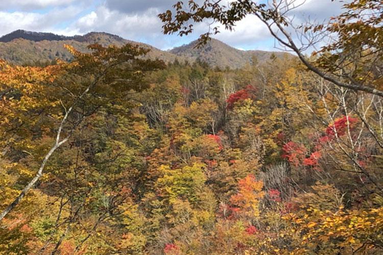Gunma Shirasuna Valley (Photo by Takahiro Takiguchi)
