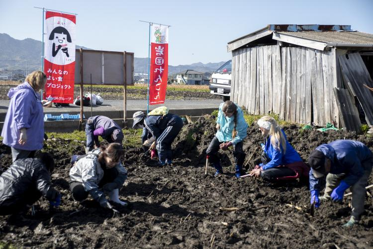 Marine Corps Air Station Iwakuni residents and Iwakuni City residents dig for lotus root during a lotus root trip hosted by the Cultural Adaptation Program (CAP) in Iwakuni City, Japan. Feb. 5, 2019. Station residents took a trip to a local market and lotus root field with the CAP in order to learn about the lotus root grown in Iwakuni. (U.S. Marine Corps photo by Lance Cpl. Angelo Sagum)