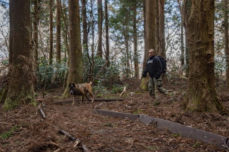 CAMP FUJI, Japan (Feb. 12, 2019) - Master-at-Arms Seaman Rachel Higuerta, from Burbank, California, guides military working dog Chuckie through a trail in search of simulated explosives at Combined Arms Training Center, Camp Fuji, Feb. 12. Members from all four military branches gathered to participate in the training which included explosive and narcotic searches, suspect intervention and veterinary training.