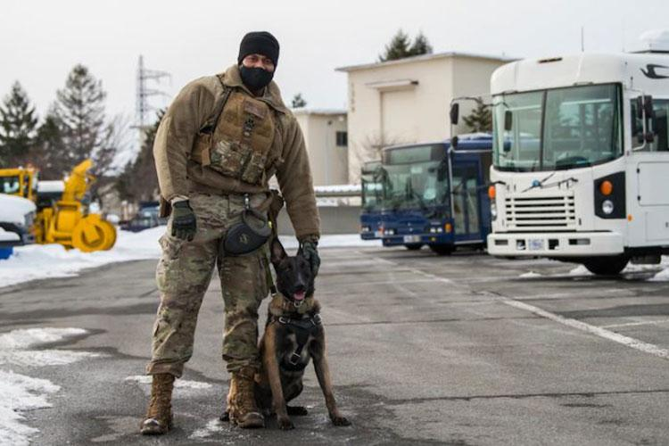 U.S. Air Force Staff Sgt. Jesse Lawson, a Military Working Dog (MWD) handler, and Assan, a MWD, both assigned to the 35th Security Forces Squadron, stand together after completing detection training at Misawa Air Base, Japan, Jan. 15, 2021. MWDs will ultimately retire out of the Air Force; and the last MWD Handler will receive first choice at adopting the partner they've worked so closely with throughout their career. (U.S. Air Force photo by Airman 1st Class Leon Redfern)