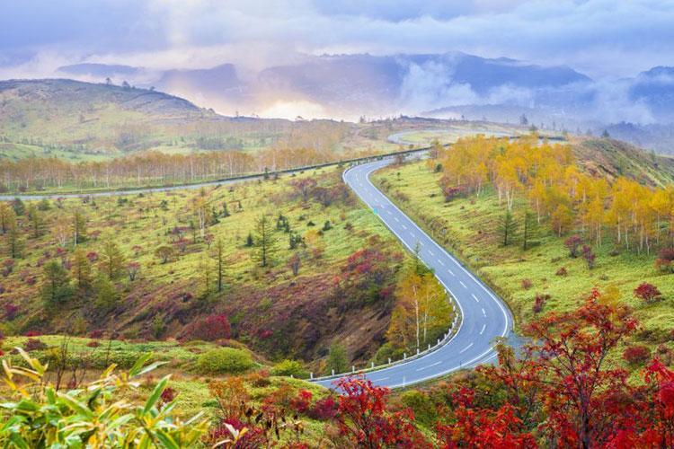 Photo: Autumn paradise in Gunma – Norikazu / Shutterstock.com