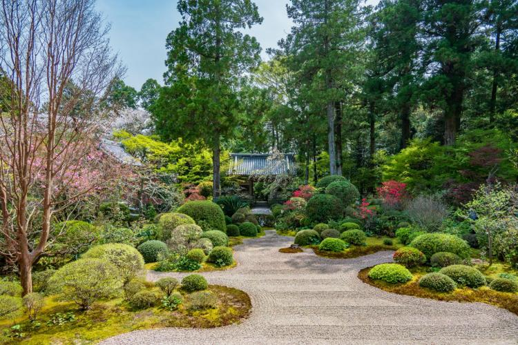 Ryotan-ji Temple is the family temple of the influential Ii family.
